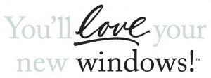 love your new window logo