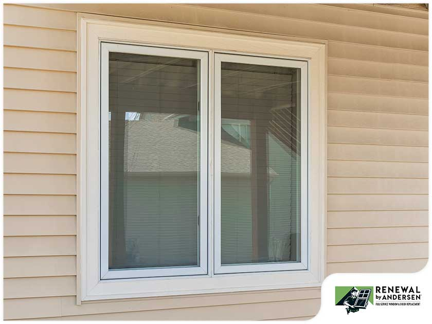 Window Warping
